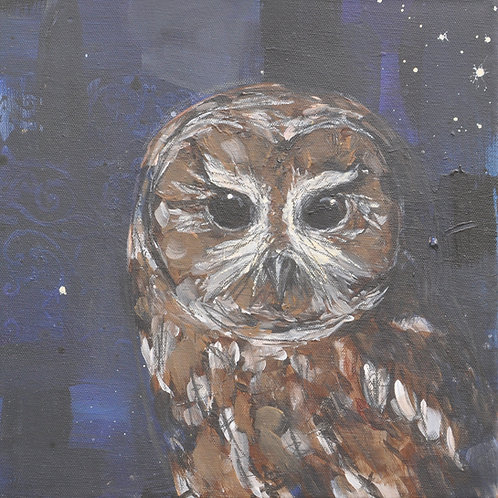 Fading into the Night Tawny Owl on Canvas