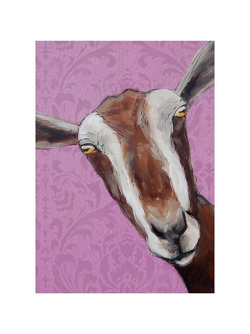 Toggenberg Goat Print
