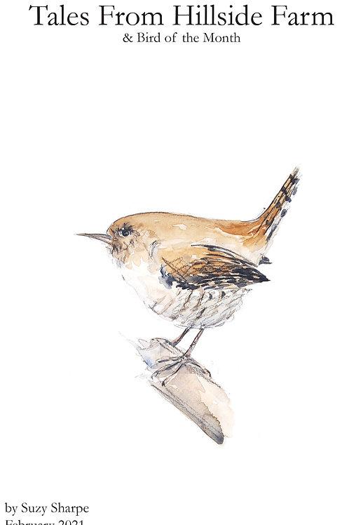 Tales From Hillside Farm & Wren Bird of the Month