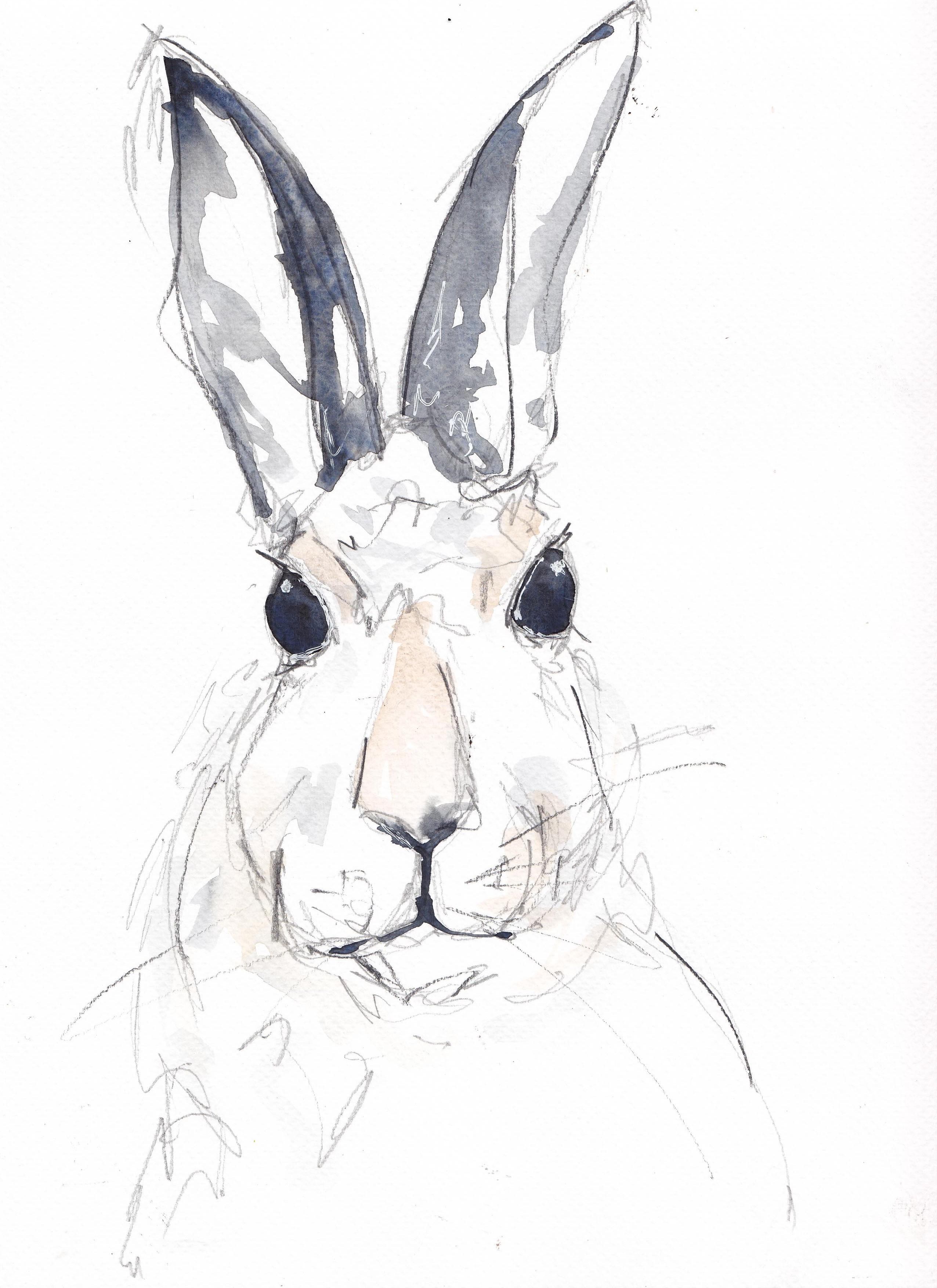sketches (4).jpg