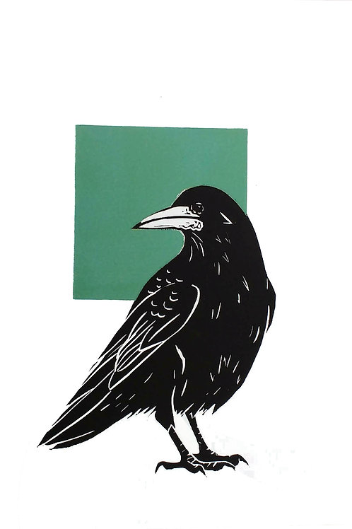 Rook looking back to a Green Square