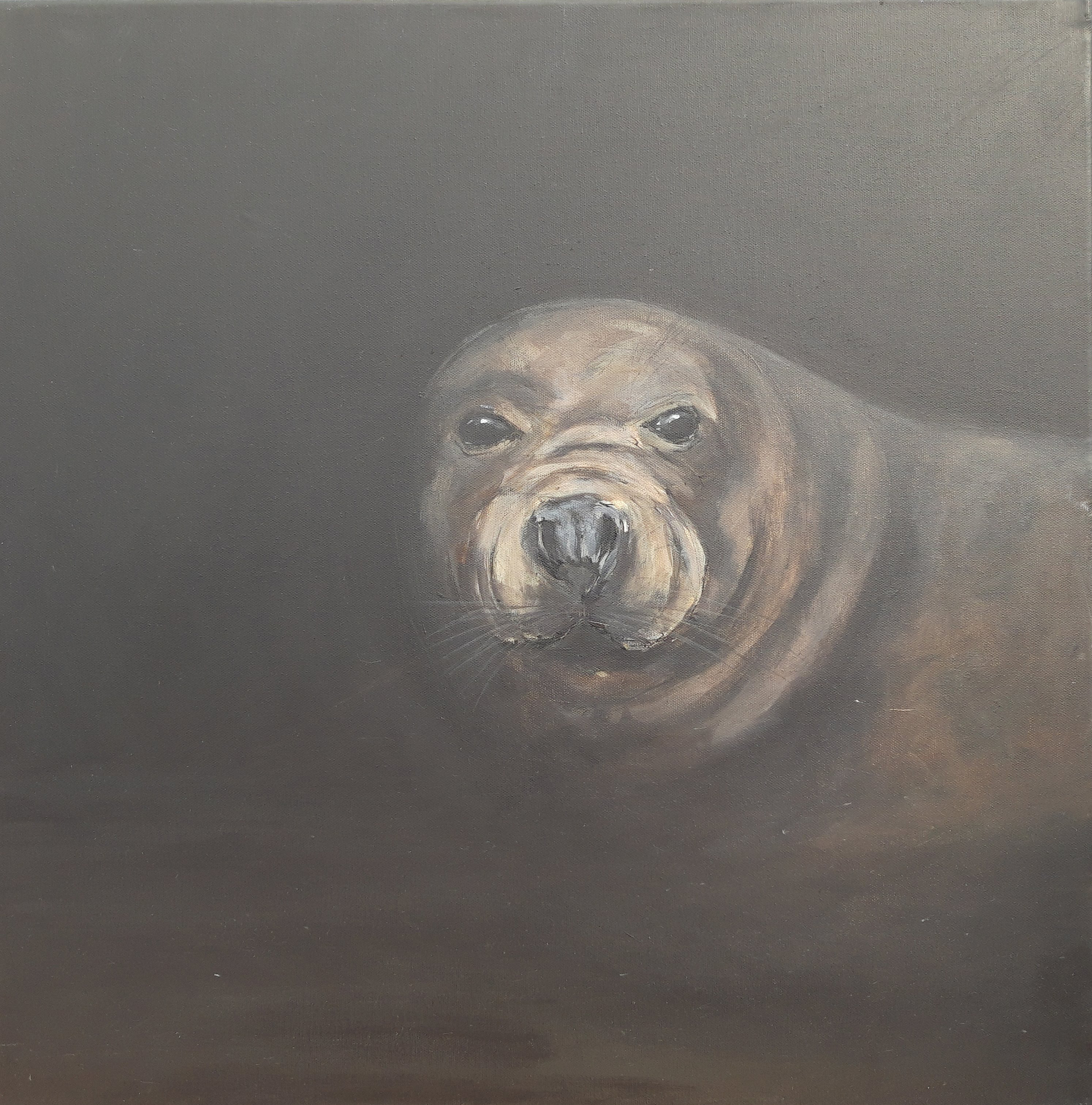 Grey Seal Painting