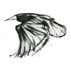 flying rook copy