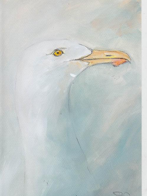 Herring Gull Original Painting
