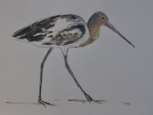 Sold at the Pol Falmouth - Hayle Godwit