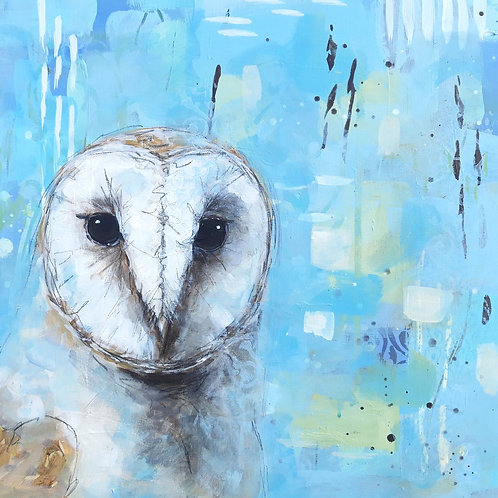 Moon Eyes - Barn Owl 50 x 50cm on canvas