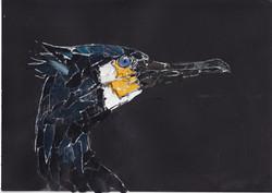 12 Cormorant collage copy.jpg