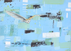 On__silent_wings_50_x_70_cm_on_Canvas_£4