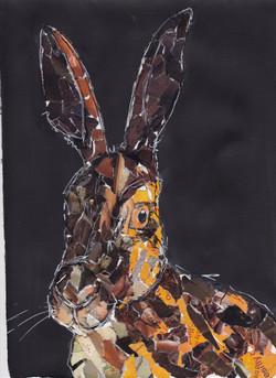 7collage hare copy.jpg