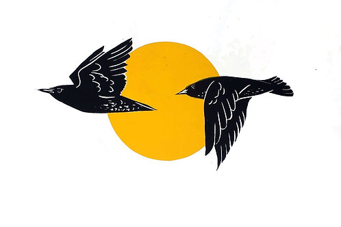 Starlings pair with a Yellow Sun