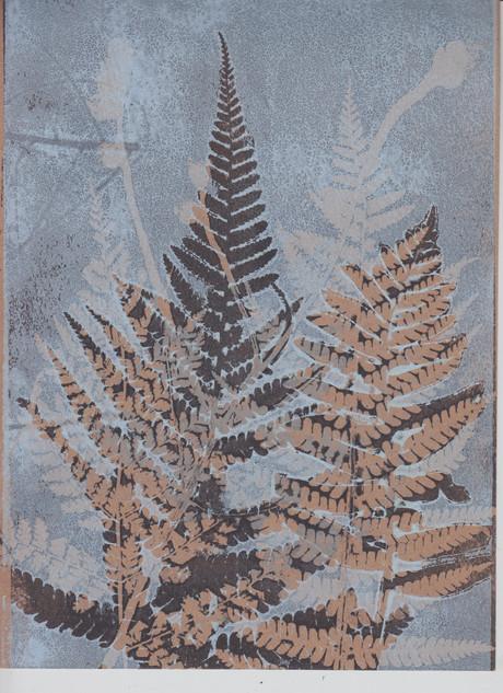 ferns monoprint
