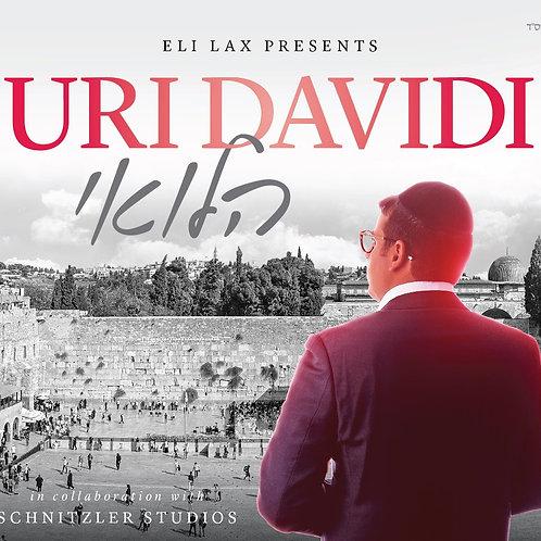 Halevai - Uri Davidi