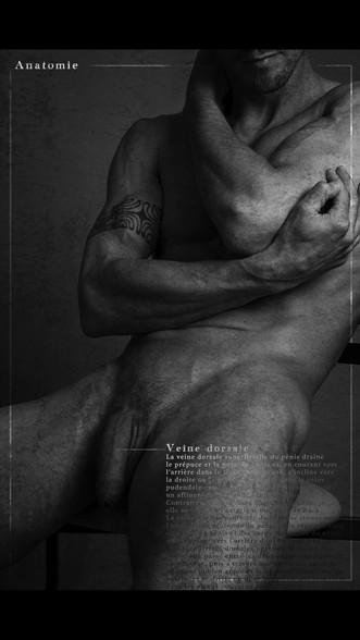 test anatomie.mov