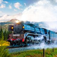 The Winter Train