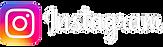 logo-instagram-2021.2.png