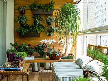 Jardim Vertical: Como montar