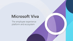 Viva: The New Employee Experience Platform from Microsoft