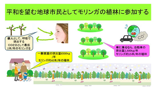 3モリンガ共生の森づくり.jpg