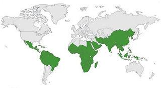 Moringa_worldmap.jpg