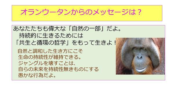 オランウータンの伝言.JPG