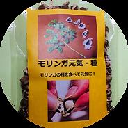 モリンガ元気製品.png