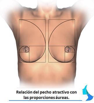 mama atractiva, pecho bonito, mamoplastia, aumento de pecho, perfecciones