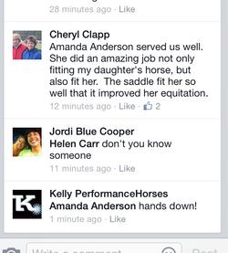 Kelly Performance Horses