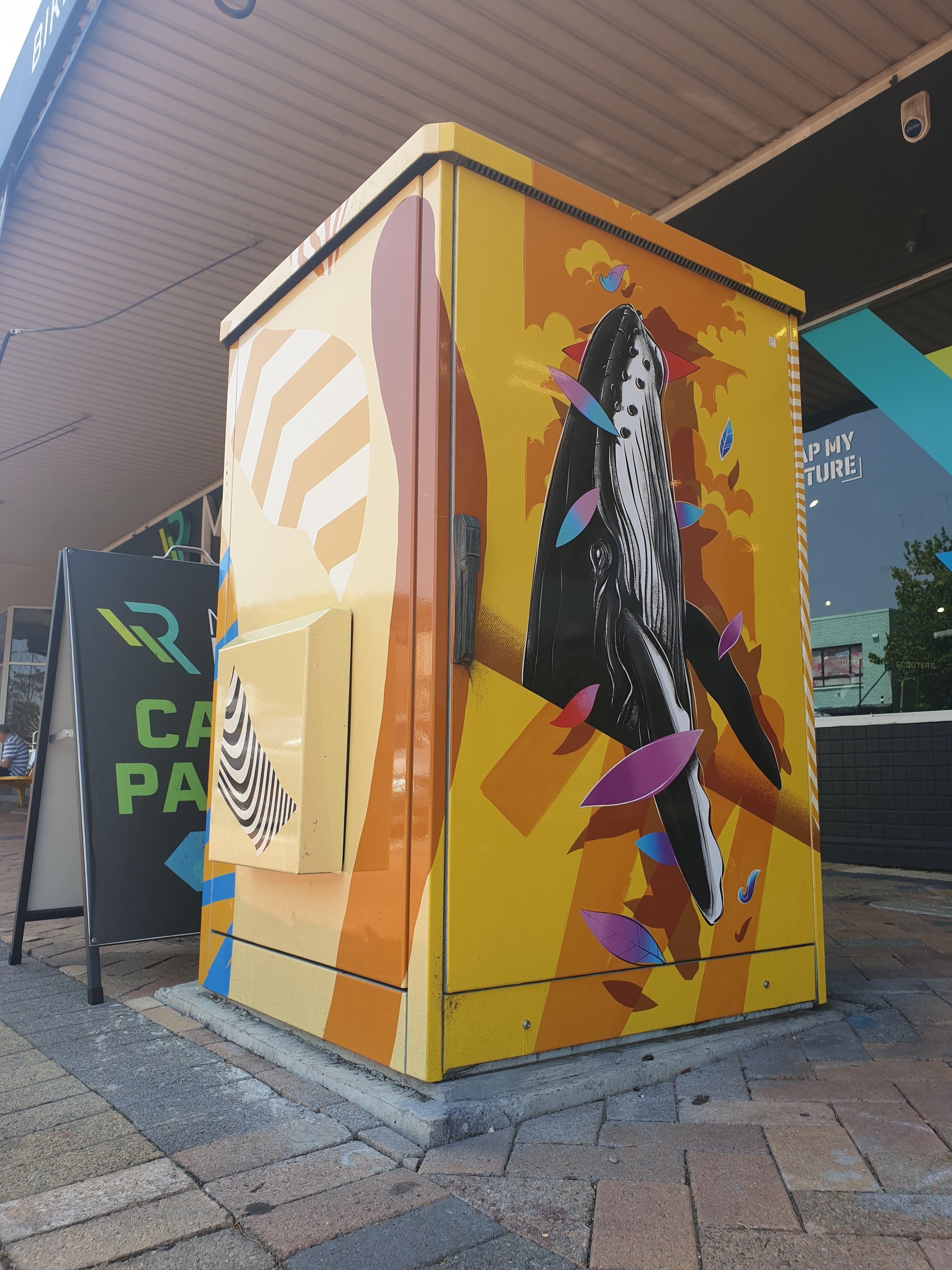 B-Line Electrical Box