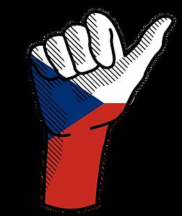 Logo NSO 2 (1).png