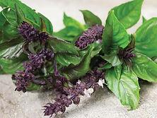 Raresight Farms Herbs