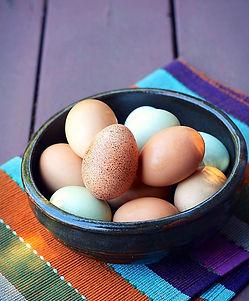 eggs-1482971_edited.jpg
