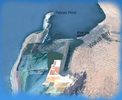 Pelican Point Tour