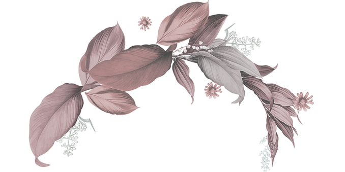 flowers png 2.png
