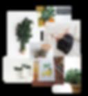 Brand Suite Portfolio Updated-03.png