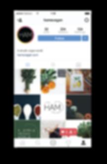 Brand Suite Portfolio Updated-01.png
