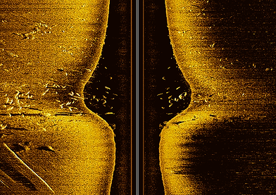 Side Imaging Electronics