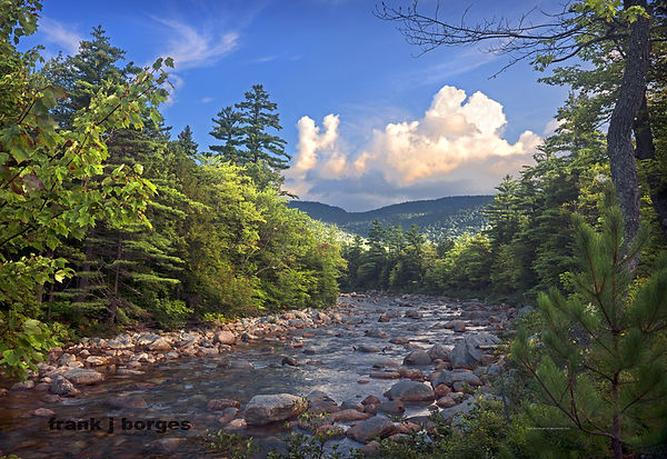 new_hampshire__River_Bed__frank_j_borges