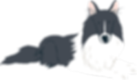 Collie-black_white.png