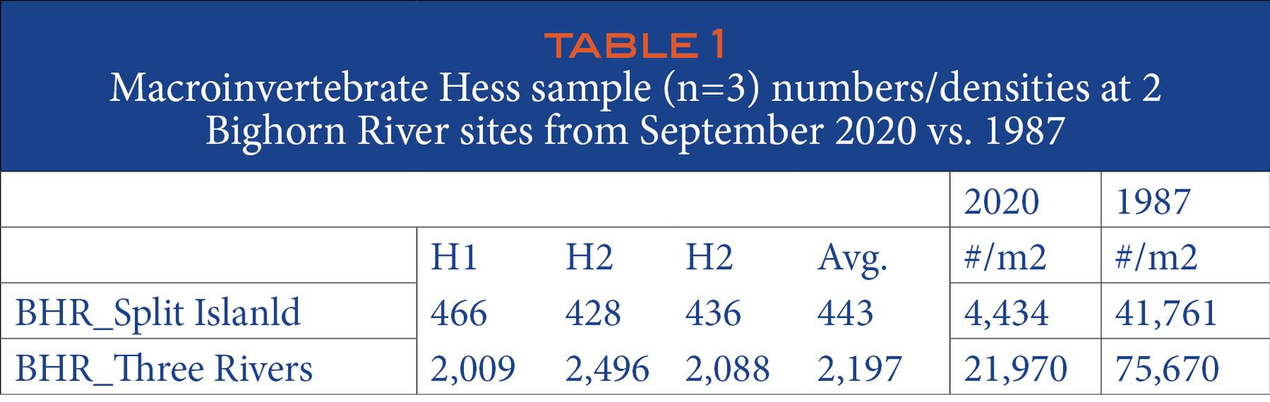 TABLE 1 Macroinvertebrate Hess sample (n=3) numbers/densities at 2 Bighorn River sites from September 2020 vs. 1987