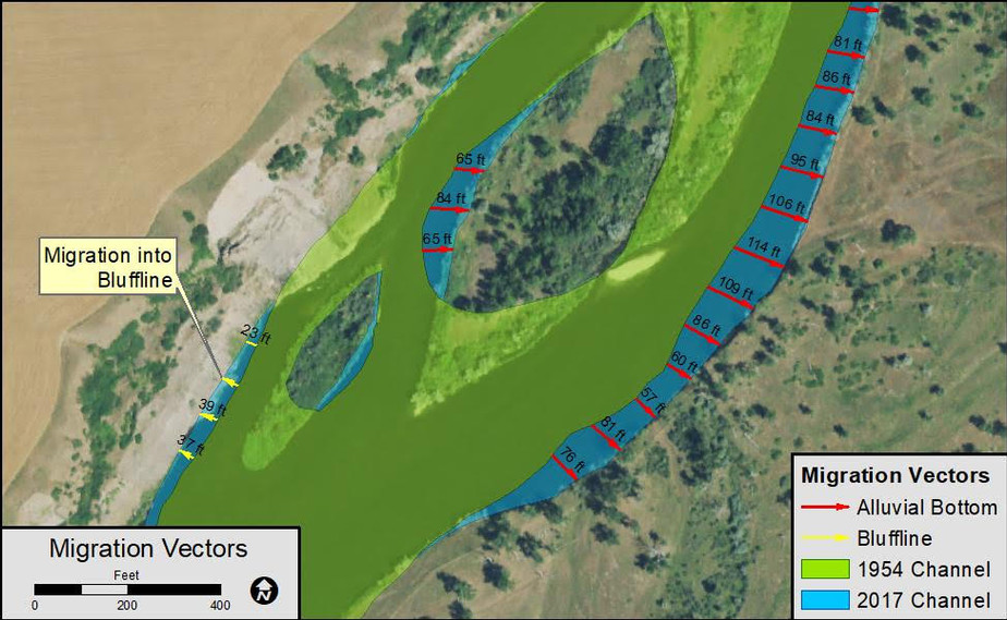 Figure 1: Example channel migration measurements showing migration into floodplain (red vectors) and bluffline (yellow vectors); vectors are labeled by migration distance in feet.