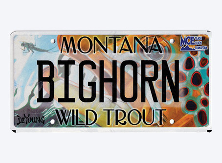Support the BHRA with a Custom MT License Plate