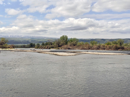 May Bighorn River Flow Update