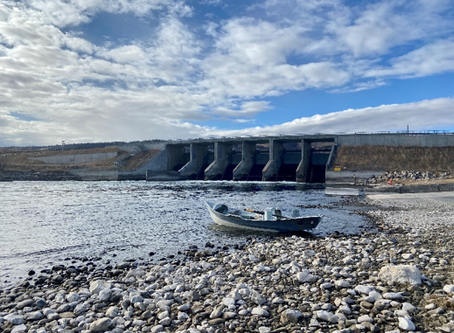 Bighorn River Flow Update