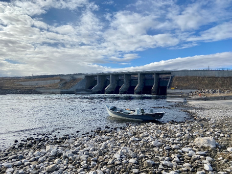 Bighorn River Flow Update