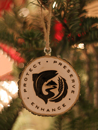 2020 Christmas Ornament