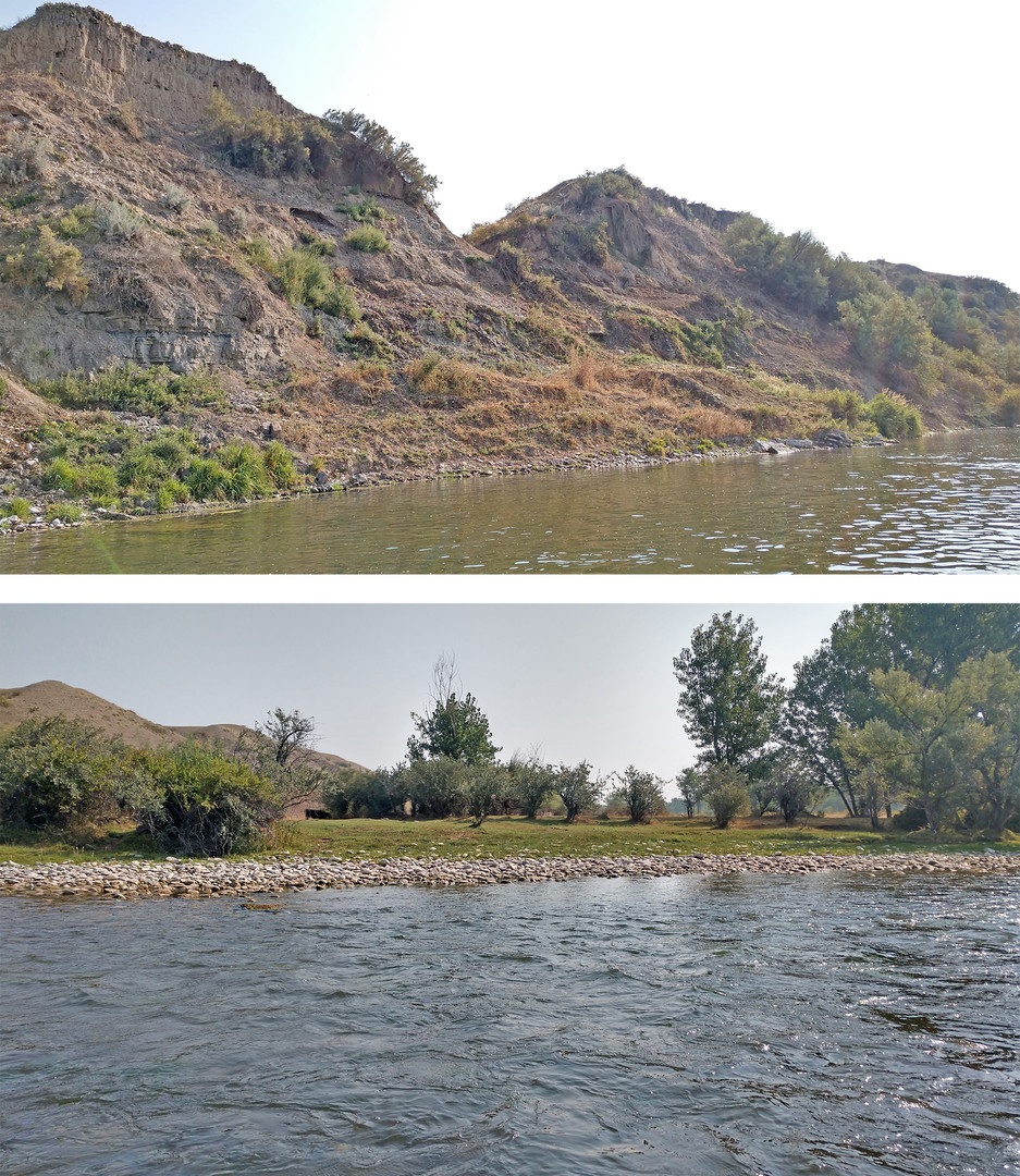"""Figure 2: Example of two existing livestock access points to the Bighorn. Top: Steep """"easily degraded"""" soil access with implications to livestock health, bank erosion, and river sedimentation that should be controlled for proper river health. Bottom: Naturally rocked river access with proper slope and water contact that minimizes river damage and sedimentation while maximizing cattle health and performance. Proper cross fencing and tank placements can be used to motivate cattle to utilize only the ideal access points to the river."""
