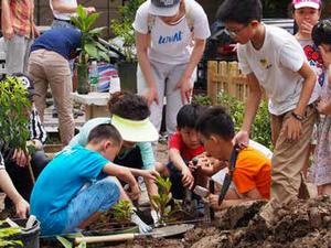 KIC Community Gardens
