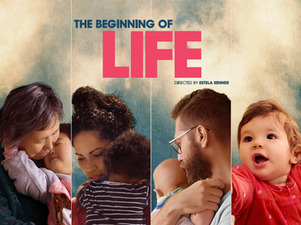 The Beginning of Life documentary - short clips