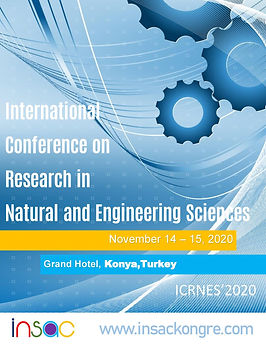 Natural and Engineering Sciences.jpeg