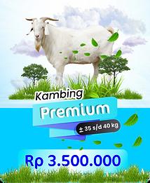 kambing premium.png